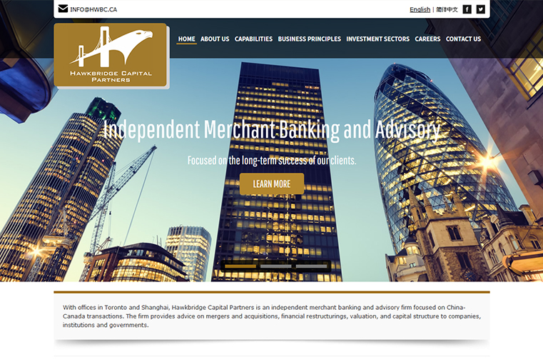 Hawkbridge Partners website design