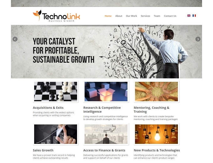 The Technolink business consultancy home page website design