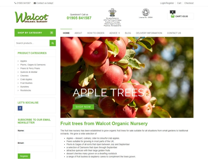 Apple trees full of fruit on Walcott website home page
